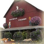 Bauman Farm & Garden  Gervais, OR