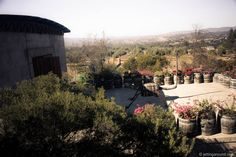 Discovering the Baja Wine Country in Mexico: Three Wineries and Some Travel Tips