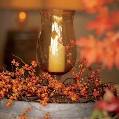 Card and gift table?!?!?Fall wedding decorations