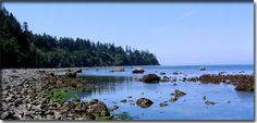Seal Bay Nature Park | Comox Valley Regional District