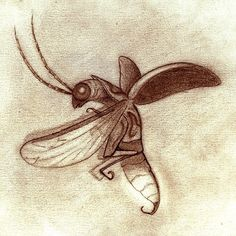 firefly drawing - Google Search