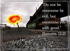 """""""Do not be overcome by evil, but overcome evil with good."""" Romans 12:21"""
