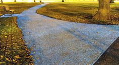 Future Roads To Be Resurfaced With Glow In The Dark Coating #technology