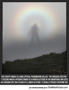 Funny pictures about The Brocken Spectre. Oh, and cool pics about The Brocken Spectre. Also, The Brocken Spectre photos. Creepy Images, Fraggle Rock, Wtf Fun Facts, Random Facts, Strange Facts, Fascinating Facts, Crazy Facts, Amazing Facts, Amazing Things
