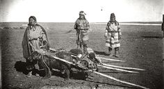 Plains Native Americans with dog travois. ca. 1900. Photo by William R. Norton.