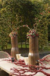 Gaultheria procumbens (bergthee)  bodembedekker of kan in pot  zorgen voor goede grond wintergroen