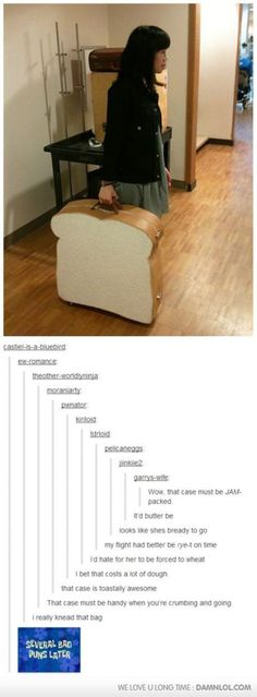 Most people see this post and think it is funny... I see this post and want the SUITCASE!