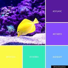 Purple | Underwater | Fish |Color Palette Inspiration. | Digital Art Palette And Brand Color Palette.