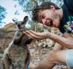 13 selfies com animais selvagens tiradas pelo Dr. Dolittle da vida real - Mega Curioso
