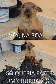 Cão Churrasqueiro