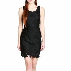🆕 beautiful  black crochet dress❤️ A definite statement piece for every closet, this pretty black dress is detailed with a rounded neckline, a figure-skimming fit and is crafted with floral appliques that give the silhouette an added dimension. Finished with a gold-toned back zipper and a V-shaped open back- cut for an added seductive appeal. Wear yours with dainty gold jewelry and strappy heels to your next date night.Fully lined Self: 100% Polyester *Lining:100% Polyester. Lush Dresses…