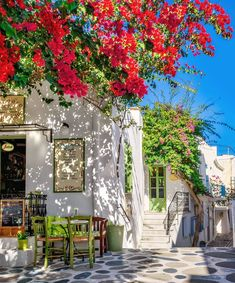 Bougainvilleas in a cafeteria at Naoussa village Paros island, Cyclades, Greece Wonderful Places, Beautiful Places, Beautiful Pictures, Travel Around The World, Around The Worlds, Places To Travel, Places To Go, Greece Islands, Beaches In The World