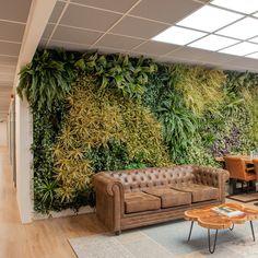 Maak je eigen groene wand, binnen of buiten, met deze kant-en-klare panelen! Indoor Waterfall, Tropical Interior, Hotel Concept, Garden Design, House Design, Future House, My House, Bed And Breakfast, My Dream Home