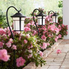 Landscape Edging, Garden Landscape Design, House Landscape, Front Yard Garden Design, Landscape Curbing, Flower Landscape, Landscape Architecture, Home Landscaping, Landscaping With Rocks