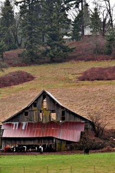 Barn & Rusting Roof