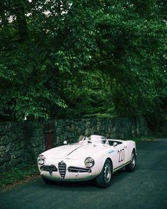 mostly cars, mostly alfas († Alfa Cars, Alfa Alfa, Alfa Romeo Cars, Lamborghini, Ferrari, Alfa Romeo Giulietta Spider, Alfa Romeo Spider, Jaguar, Porsche