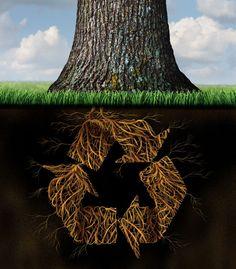 Presentan iniciativa para contenedores en lugares públicos de recolección de pilas, ropa, latas, desechos tecnológicos y envases - http://plenilunia.com/prevencion/presentan-iniciativa-para-contenedores-en-lugares-publicos-de-recoleccion-de-pilas-ropa-latas-desechos-tecnologicos-y-envases/46300/