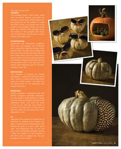 cute pumpkins