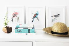 Poppytalk: Spring Makeover | 6 Free Wall Art Printables - British birds collection