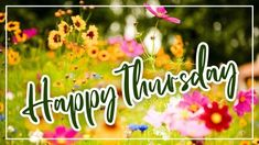 Beautiful Happy Thursday Image edited with flowers background for Wish Someone A Beautiful Happy Thursday. Happy Thursday Images, Wishes Images, Image Editing, Flowers, Beautiful, Editing Pictures, Florals, Flower, Bloemen