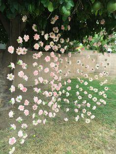 Carnation flower curtain as photo backdrop