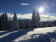 Ruhpolding; Unternberg; Herrliche Sonne auf dem Berg genießen; anschließend mit dem Schlitten den Berg hinab - herrlich