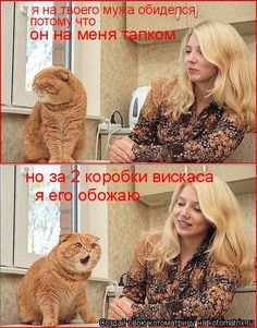 Нет... я не обиделась   KotoMail.ru