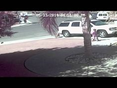 World's Most Awesome Cat Rescues Little Boy From Dog Attack!