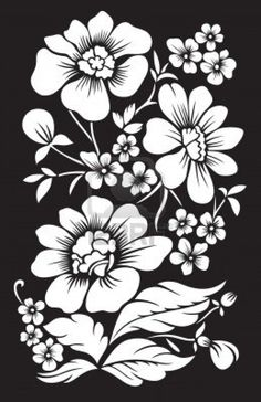 129 Best Black And White Flowers Background Images Black White
