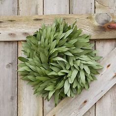 Fresh Bay Leaf Wreath - contemporary - holiday outdoor decorations - Terrain