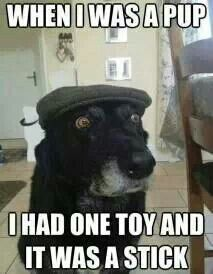 """..""""Back in my days"""".. dog perspective"""