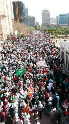 Historic march now in Cape Town #SAMarch4Gaza pic.twitter.com/A6iBdzMD6P - August 9 2014