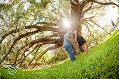 The Mayor Tree Orlando Engagement Photography