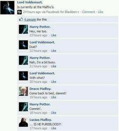 Draco and Harry love. ;)
