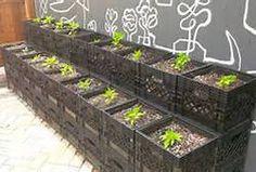milk crate gardening - What an easy idea.