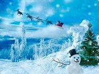 Iarna  de Adelina