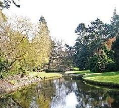 The National Botanic Gardens, Glasnevin, were founded by the Royal Dublin Society in Dublin Things To Do, Places To See, Places Ive Been, Visit Dublin, Local Activities, Botanical Gardens, Parks, Stuff To Do, Golf Courses