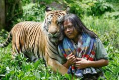 Incredible friendship between a girl and Tiger - Tiger Pictures