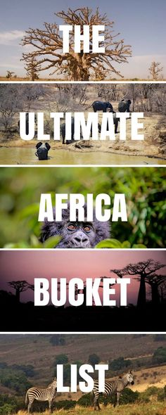 Planning a trip to #Africa? This post is for you! We've listed the Best Places To Visit In Africa to help plan your trip. With safari hot-spots, traditional tribes, incredible landscapes, epic road trips, stunning waterfalls, amazing hikes & beautiful beaches (just to name a few!). It's the Ultimate Africa Bucket List! #Africa | Africa Travel | Africa Safari | Africa Landscape | Africa People | Africa Photography