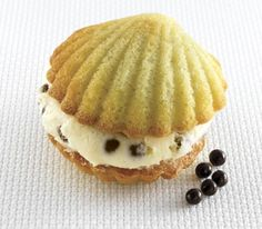 scallop whoopie pie, adorable