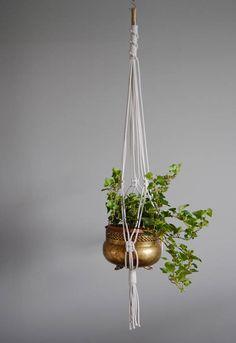 Macramé Plant Hanger / Hanging Planter