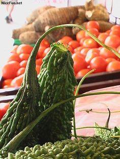 Creepiest Vegetables! Creepy, Stuffed Peppers, Vegetables, Food, Stuffed Pepper, Veggies, Essen, Vegetable Recipes, Yemek