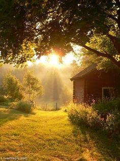 Beautiful Morning photography beautiful sun sunrise country morning barn farm