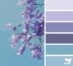 color sprung, by design seeds Colour Pallette, Colour Schemes, Color Patterns, Color Combos, Design Seeds, Color Concept, Color Balance, Balance Design, Color Swatches