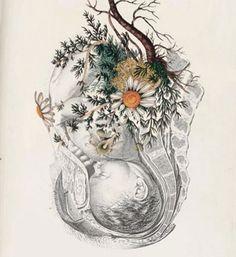 Nixie Opal's Deep Night Water Birth — Mythic Medicine Birth Art, Human Anatomy Art, Pregnancy Art, Brain Art, Hyper Realistic Paintings, Baby Posters, Water Birth, Mother Art, Midwifery