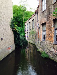 Canals the grace the fairytale town of Brugge Belgium