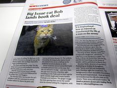 Big Issue on Bob the Angel Tube Cat's book deal