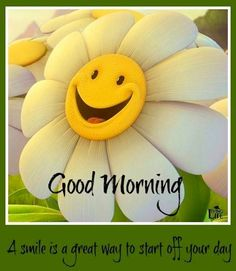 ☼ Good morning everyone!...:)
