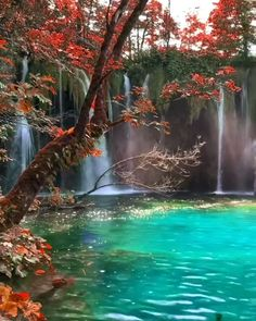 Beautiful Scenery Pictures, Cool Pictures Of Nature, Beautiful Photos Of Nature, Beautiful Places To Travel, Beautiful World, Beautiful Landscape Wallpaper, Beautiful Landscapes, Nature Gif, Nature Videos