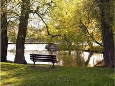 Stratford, Ontario, Canada is a pleasant place to spend a Sunday afternoon Places To See, Places Ive Been, Beautiful World, Beautiful Places, Stratford Ontario, Stratford Festival, Picnic In The Park, Running Away, To Go